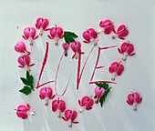 Heart of pink flowers (bleeding heart) with the word 'Love'