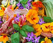 Salad ingredients: nasturtiums, dill, basil and borage