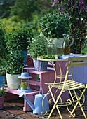Verschiedene Minzesorten in Töpfen auf Etagere im Garten