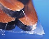 Three fresh salmon steaks in freezer bag