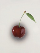 Cherry with stalk and leaf