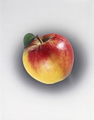 Red and yellow apple with stalk and leaf