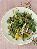 Salad leaves with avocado, mango and onions