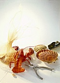Still life with lobster, lobster claw and scallops