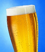 A glass of light beer