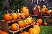 Painted pumpkins (Vermont, USA)