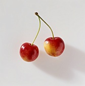A pair of sweet cherries