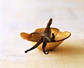 Vanilla pods in wooden bowl