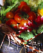 Still life with tomatoes, radishes and shellfish
