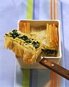 Turkish spinach pie