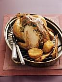 Roast chicken with pine nut stuffing