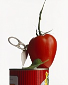 Fresh tomato with tin