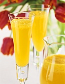 Mimosa (cocktail of orange juice, champagne and Cointreau)