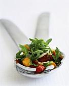 Pepper salad with rocket and Parmesan on salad servers