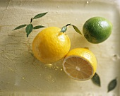 Still life with lemon and lime