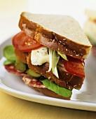Salami, tomato and cheese sandwich