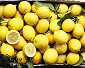 Sicilian lemons in a crate