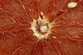 Slice of grapefruit (close-up)