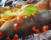 Charr fillet with vegetables in foil