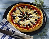 Pizza siciliana (Pizza mit Sardinen), Sizilien, Italien