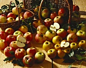 Various types of apples