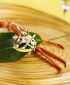 Crab appetiser