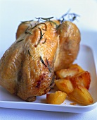 Roast guinea-fowl with rosemary and potatoes