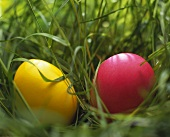 Two coloured eggs in grass