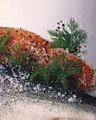 Gravad lax with salt and dill