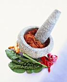 Curry paste in mortar, surrounded by various spices