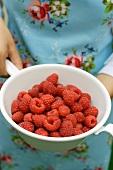 Hand holding colander of fresh raspberries