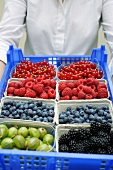 Woman carrying crate of various types of berries