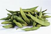 Green Japanese soya bean pods (Edamame)