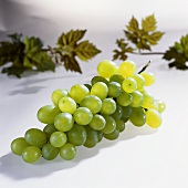 White grapes (variety: Victoria, Italy)