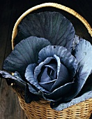 Red cabbage in basket