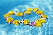 Blumenkranz auf Wasser schwimmend