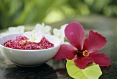 Red cabbage salad with cashew nuts
