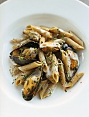 Wholemeal penne with mussels