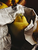 Quince wrapped in newspaper