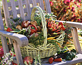 Basket of vegetables and herbs on garden chair
