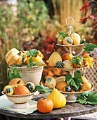Ornamental gourds in bowls and on tiered stand