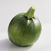 Runde Zucchini 'Eight ball F1 hybrid'