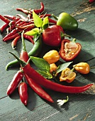 Five different types of chili peppers
