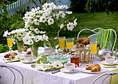 Laid breakfast table with vases of Cosmos, in open air