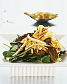 Beef salad with cucumber and mango