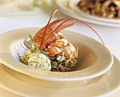 Lobster with herb butter