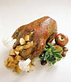 Roast goose stuffed with apple