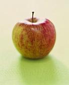 Whole Fresh Apple
