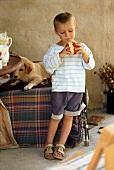 Small boy eating an apple