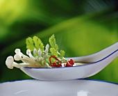 Asian soup in spoon